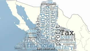 Tax laws in Mexico