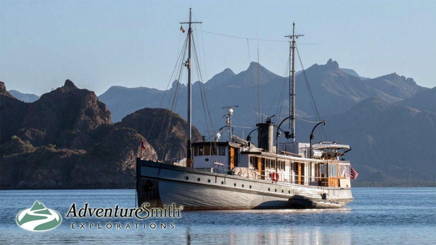 A small ship cruise of the Sea of Cortez aboard the Westward – Photo Wendy Shattil