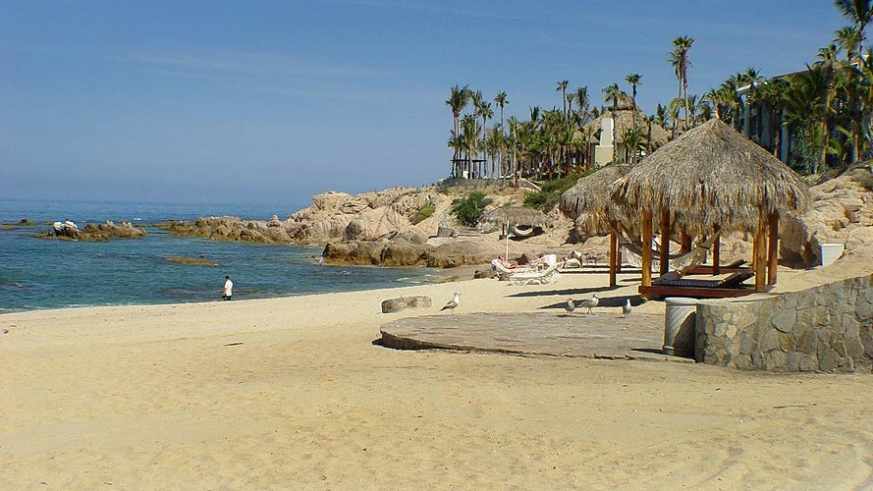 Palms give the beach that tropical feel in Baja California Sur, like this one on East Cape