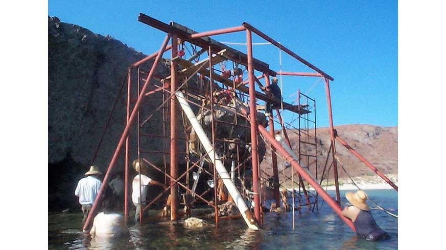 """Mushroom Rock being lowered onto the 4"""" stainless ship shaft to amekt he repair durable."""