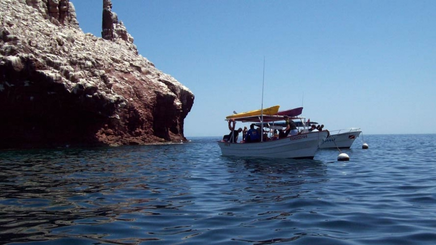 Day charter vessels at Los Islotes, near La Paz