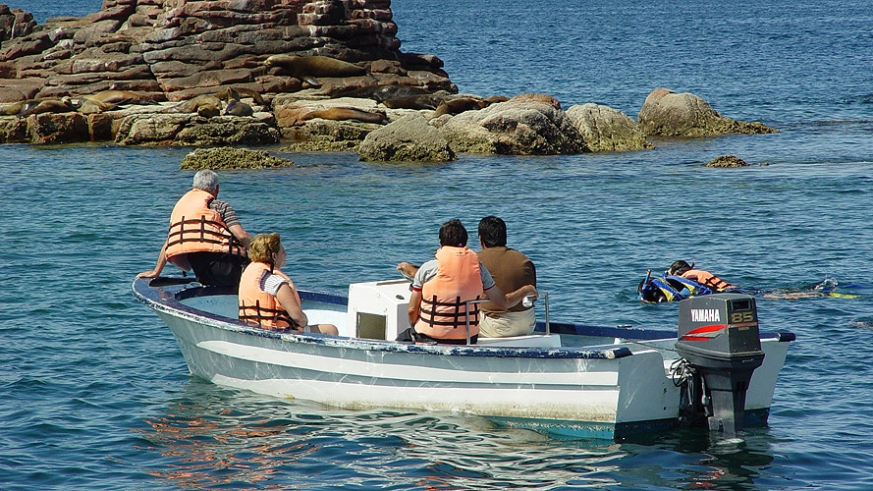 Tour charter with guests snorkeling the sea lions of Los Islotes