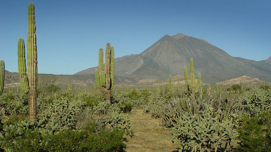 Tres Virgenes is a series of three semi-inactive volcanos. The last known eruption was in the time of the first Spanish Jesuits